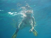 discover snorkeling tenerife